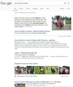 can you ride a llama google search results page